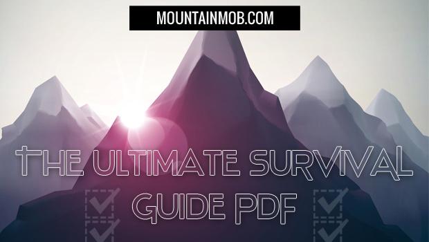 survival guide pdf